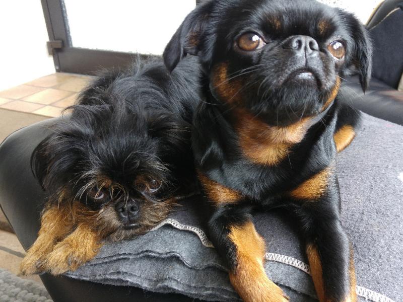 Lulu und Lili / Empfang und Bewegungscoaching